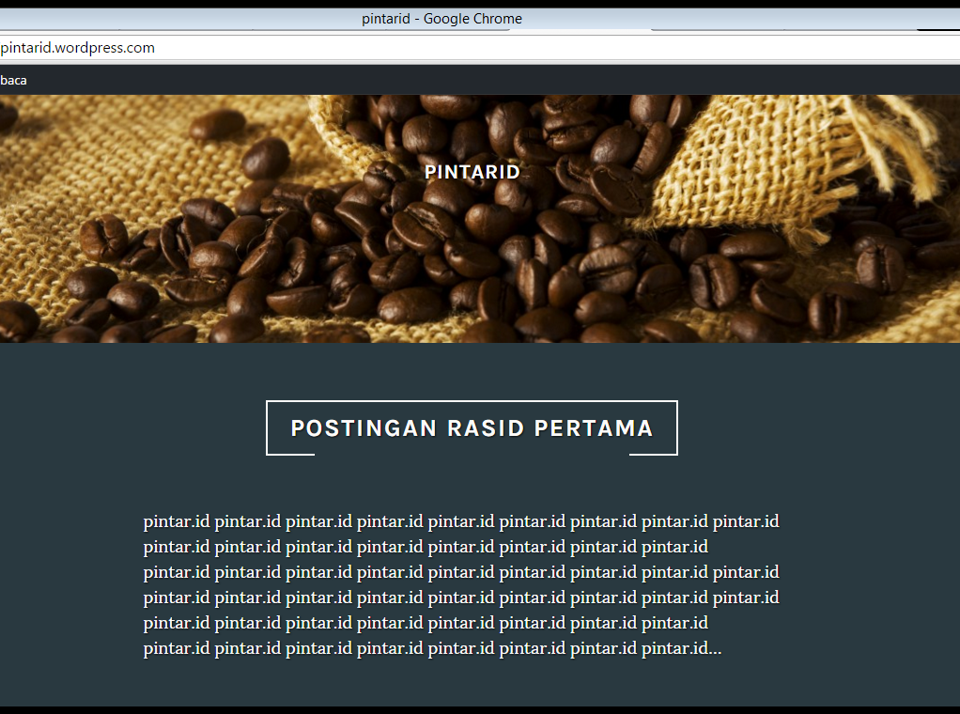 15 cara membuat wordpress indonesia emerer.om